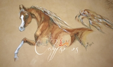 Calypso OS Painted on deerskin by Janice Taylor